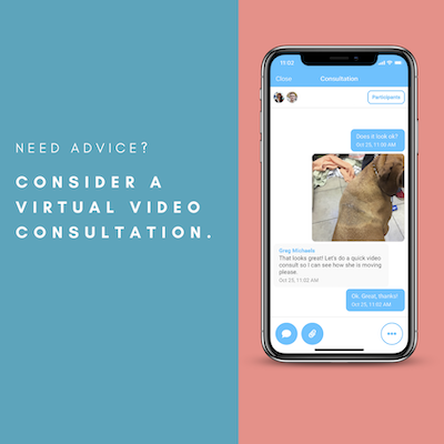 Graphic for video consultations